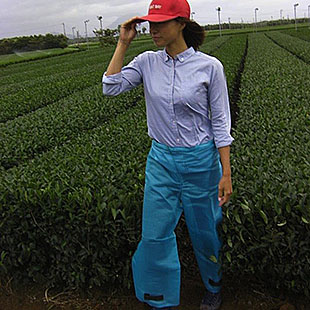 農作業の必需品      「ズボンカバー」のイメージ